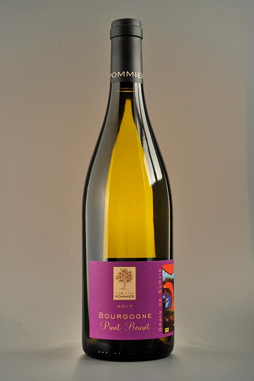Bouteille Bourgogne Pinot Beurot Grain de Survie